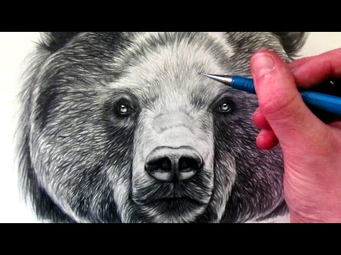 Panda Tattoos Designs, Ideas and Meaning | Tattoos For You