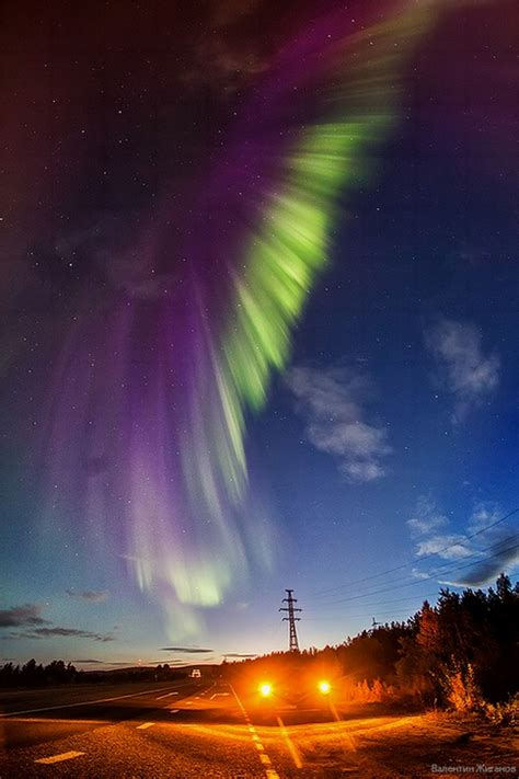 Northern lights in the sky over Murmansk region · Russia