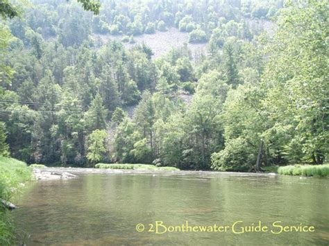 2Bonthewater Guide Service - 2011 Apologizing for the mis