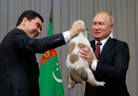 Dog lover Putin gets top breed pup as birthday gift from